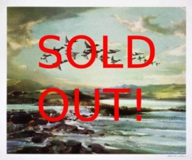 Gee Vaucher - Flying High SOLD OUT