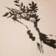 Banksy - Flower