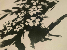Flower - Croydon