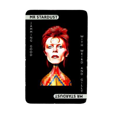 Cluedo - Mr Stardust